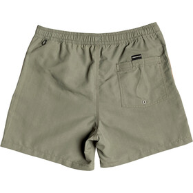 Quiksilver Beach Please Volley 16 Pantaloncini Uomo, four leaf clover